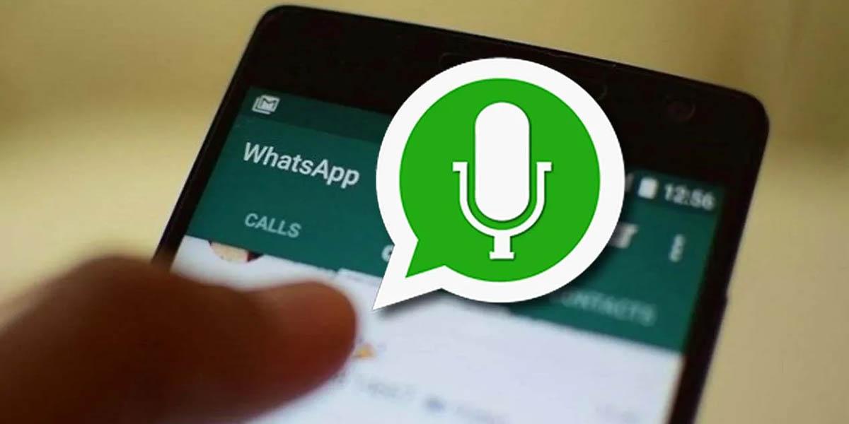 Cómo descargar audio WhatsApp Android