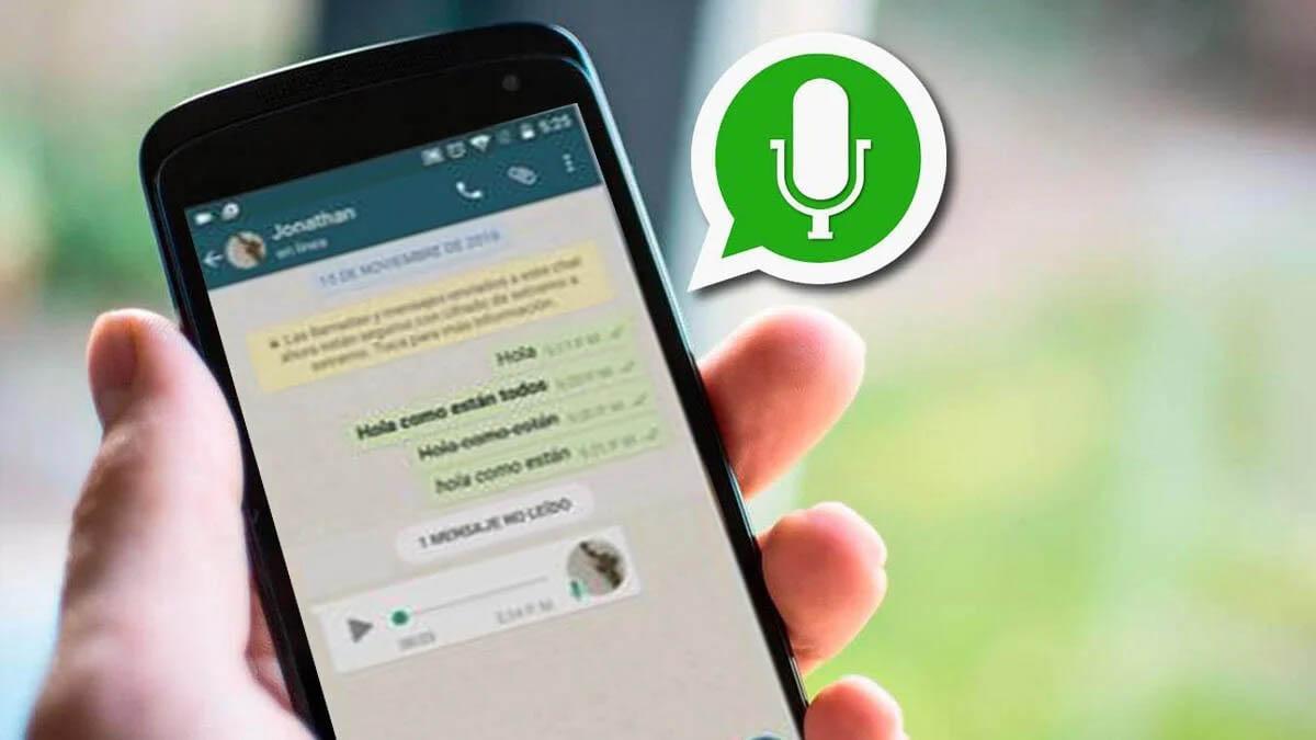 Dónde guarda los audios WhatsApp